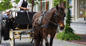 馬車 coach