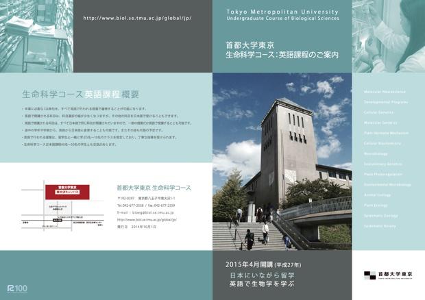 このコースでは、英語と日本語での授業を自由に組み合わせて受講し、卒業に必要な124単位をすべて英語で取得することも可能。