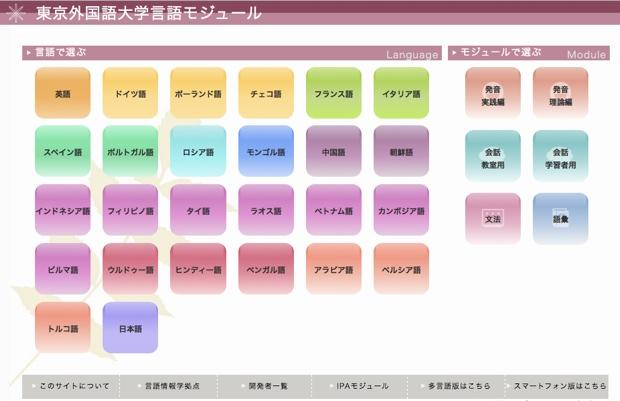 東京外国語大学大学院の21世紀COEプログラム「言語運用を基盤とする言語情報学拠点」の研究成果を活かして開発されたオンライン言語教材で、言語学、言語教育学、情報工学を統合して創成した「言語情報学」に準じた内容となっています。