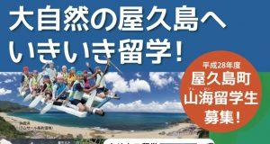 屋久島留学1