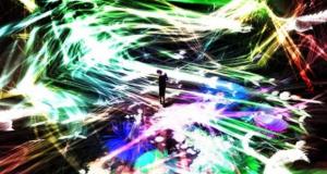 チームラボ「追われるカラス、追うカラスも追われるカラス、そして衝突して咲いていく- Light in Space」(2016年、インタラクティブ・デジタル・インスタレーション)