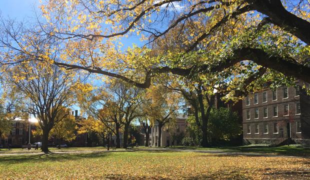 天気がいい日のブラウン大学キャンパス